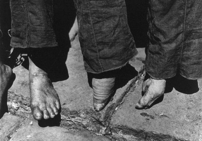 «Лотосы» оставались в моде до начала 1900-х годов